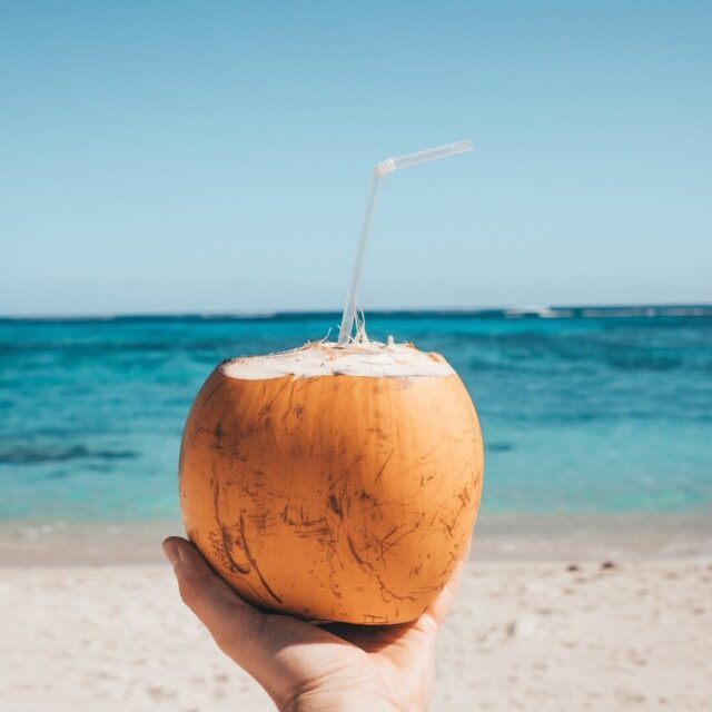 💦 COCONUT FACTS 🌴🥥 _ ✅ Did you know coconuts are considered to be one of the healthiest fats in the world? 😲 So make sure you order our Coconut Protein (the worlds first coconut protein) today! 💥 _ ✔️ Australian Made ✔️ Australian Delivery ✔️ 24 Hour Dispatch ✔️ LINK IN BIO 📦 _ 👉 Head to our BRAND NEW website to get your Cocoway right now! >> www.cocoway.com.au ⬅️ - #CocowayProtein #CoconutProtein #Vegan #AustralianMade #Facts #Australia #Coconuts